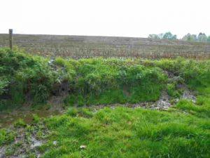 mest naast Thunisbach